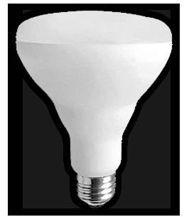 ampoule-del-br-30-13w