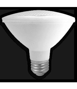 ampoule-del-par30-10w